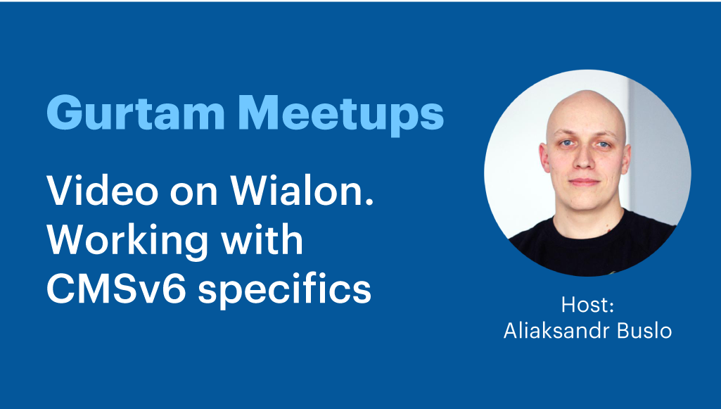 Video on Wialon. Working with CMSv6 specifics