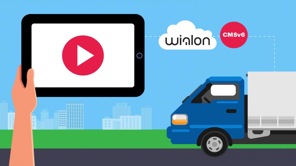 Wialon и видеомониторинг